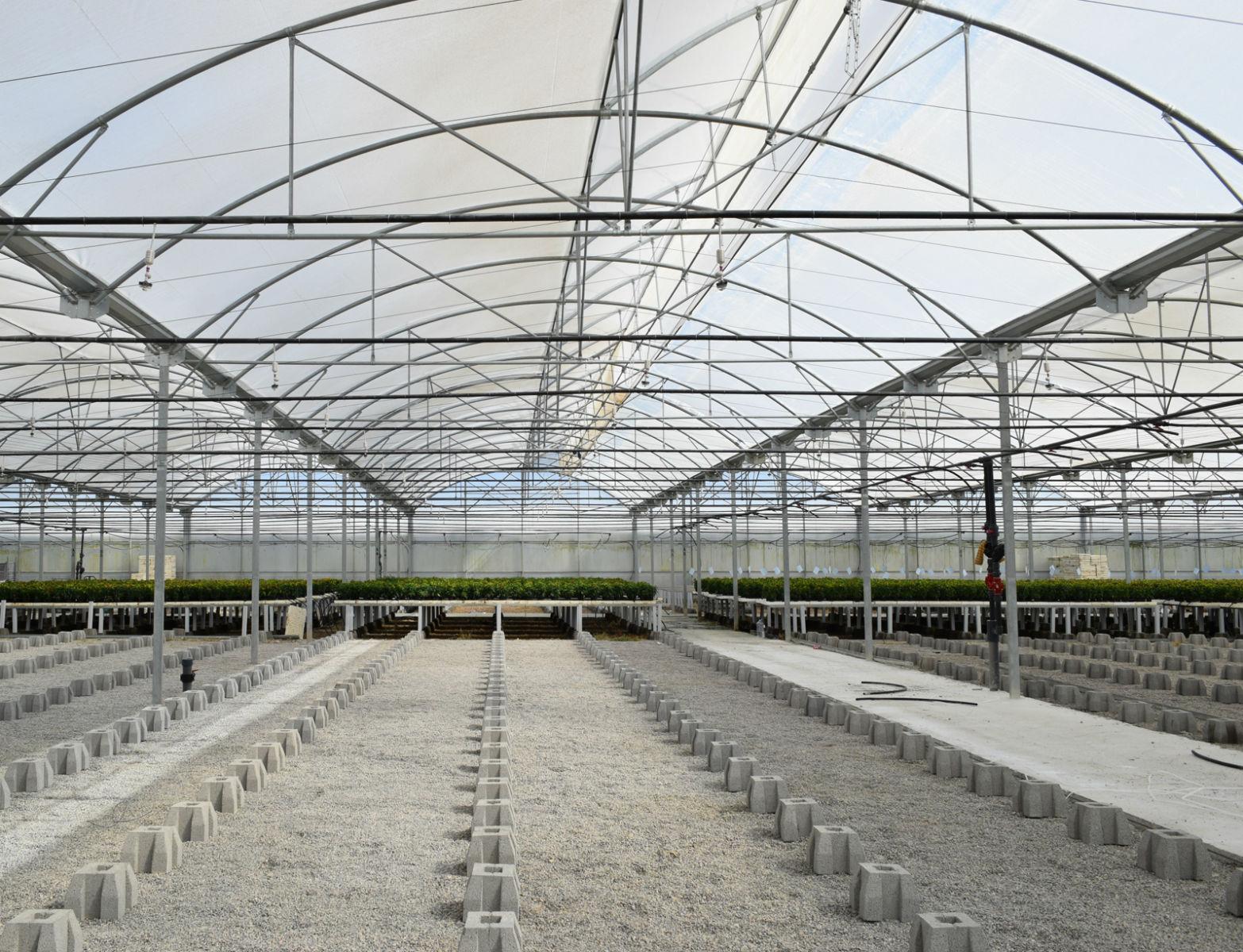Proyecto-Agroclean-Invernaderos-Invernadero-Multitunel-06