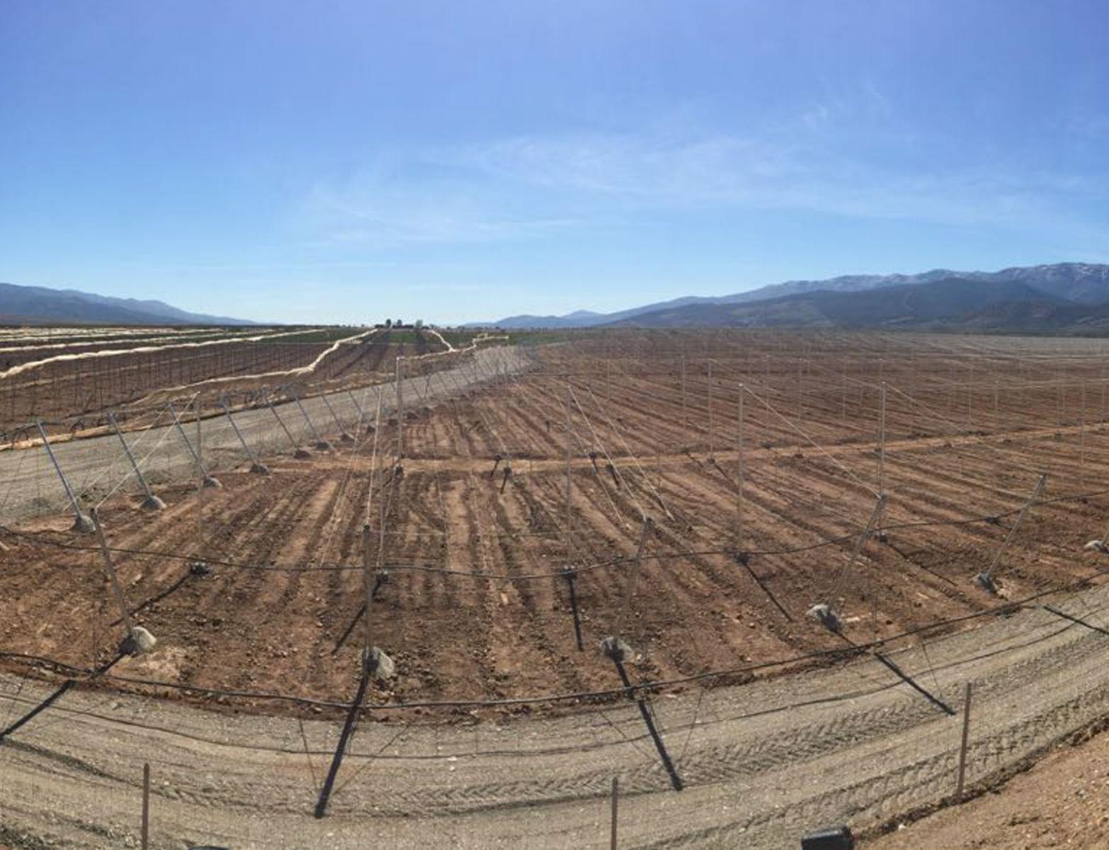 Proyecto-Agroclean-Invernaderos-Malla-Sombra-01