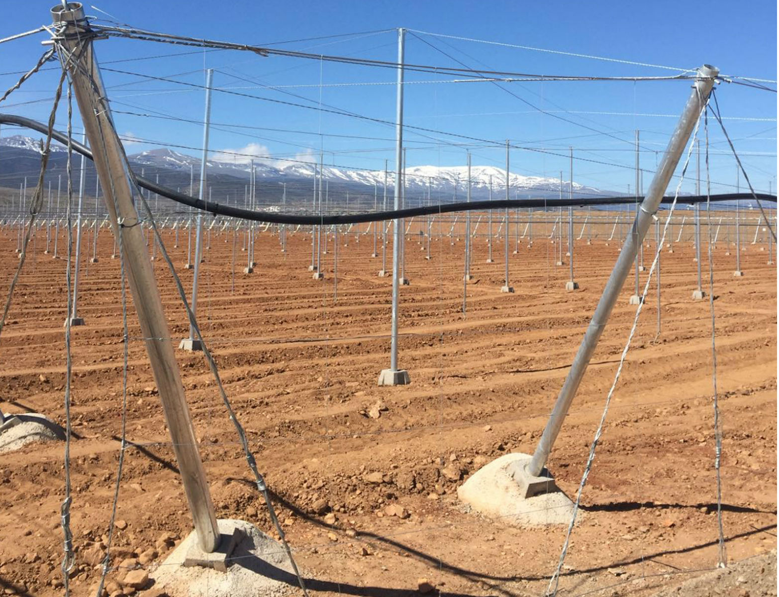 Proyecto-Agroclean-Invernaderos-Malla-Sombra-03