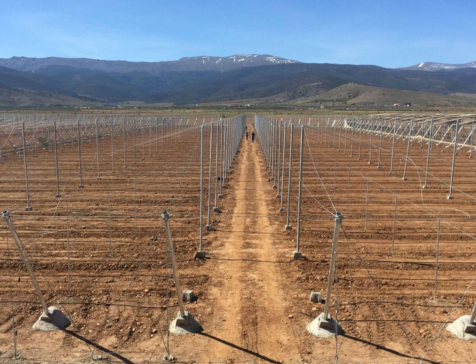 Proyecto-Agroclean-Invernaderos-Malla-Sombra-05