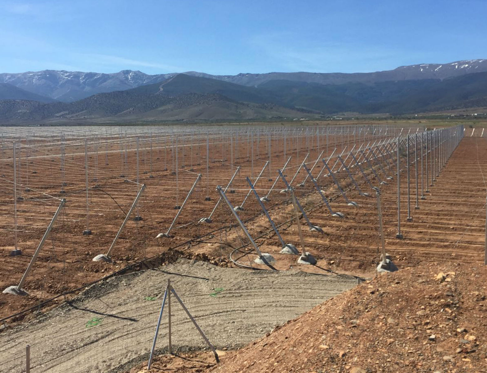 Proyecto-Agroclean-Invernaderos-Malla-Sombra-06