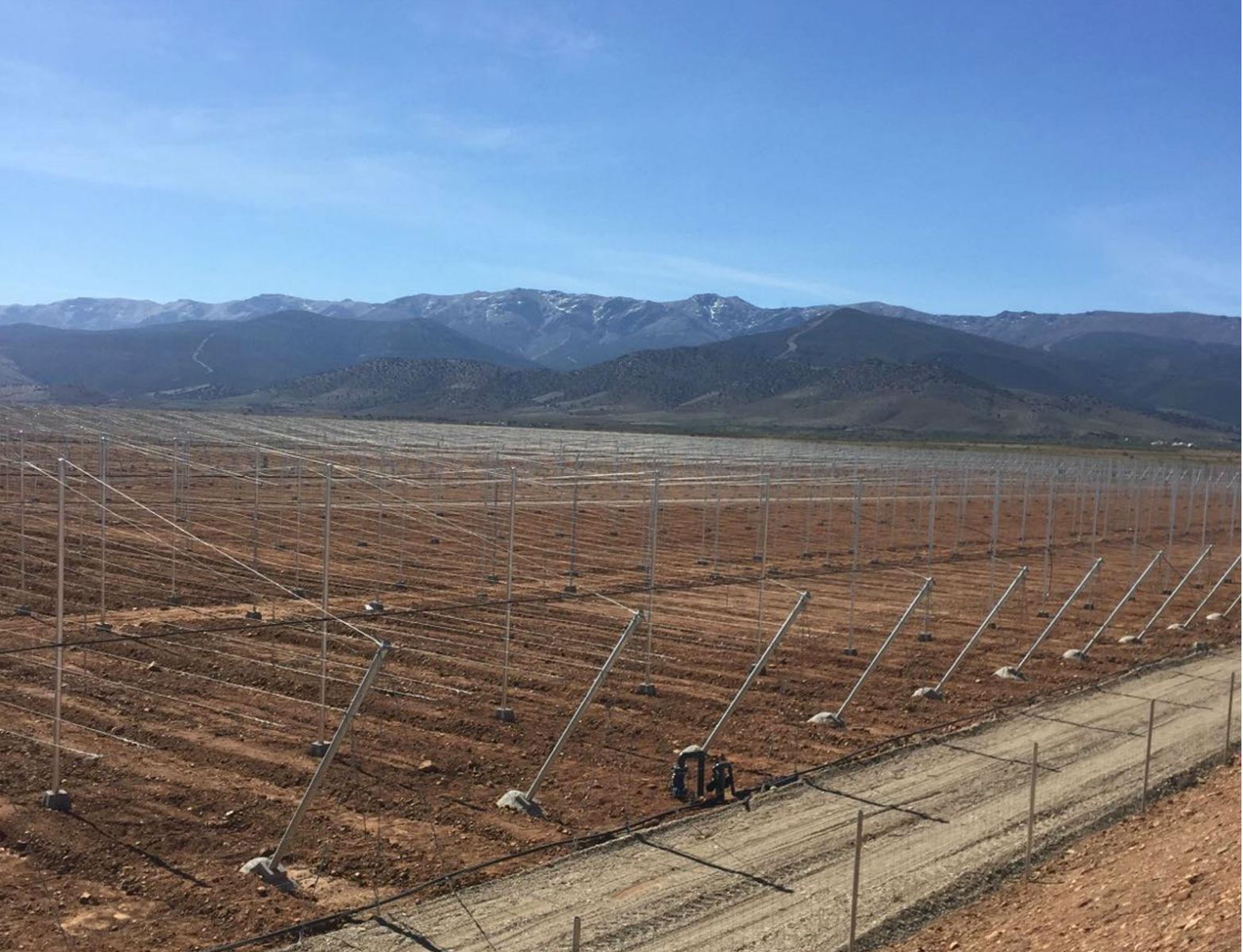 Proyecto-Agroclean-Invernaderos-Malla-Sombra-07