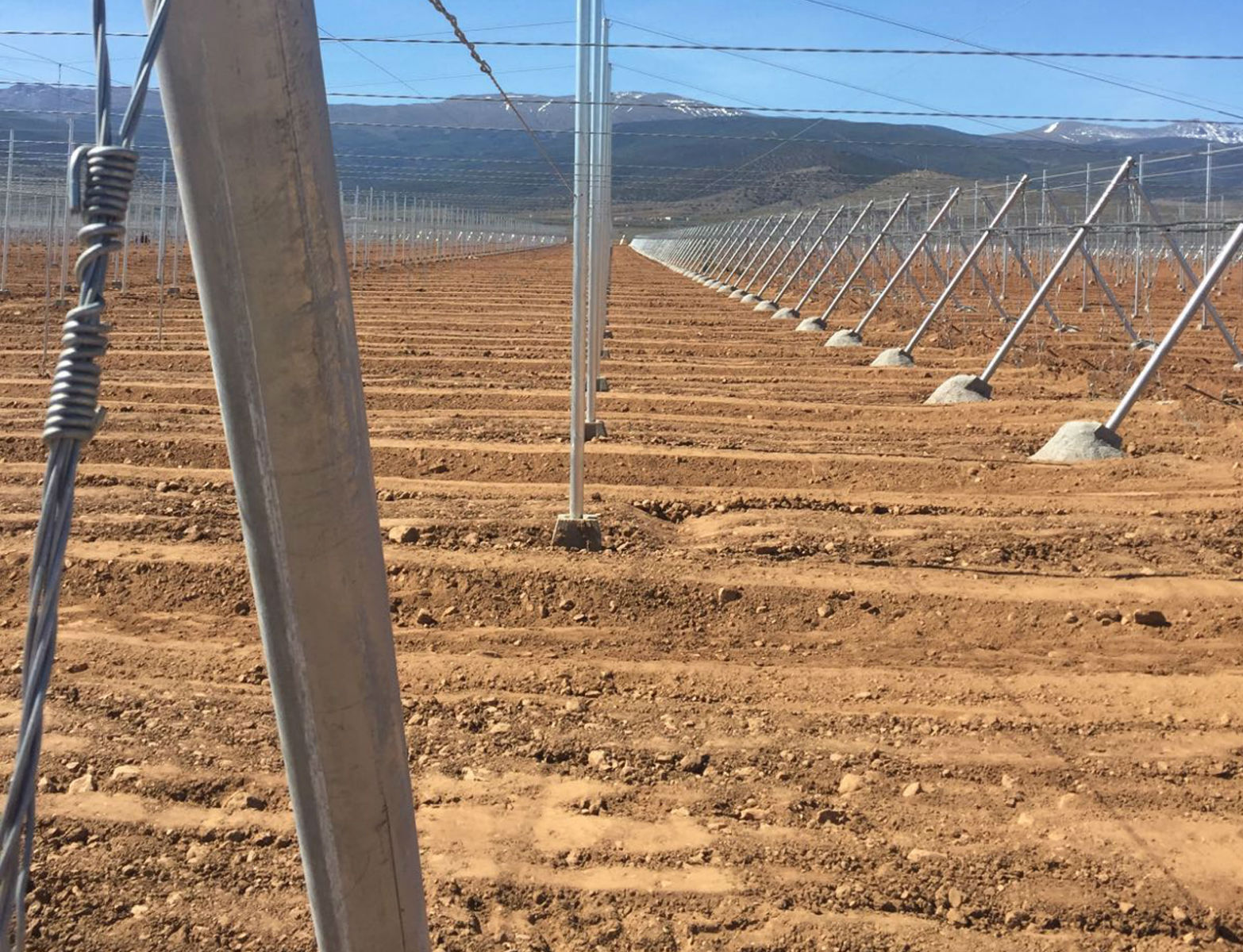 Proyecto-Agroclean-Invernaderos-Malla-Sombra-08