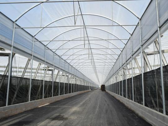 Proyecto-Agroclean-Invernaderos-Otros-Proyectos-Tunel-01