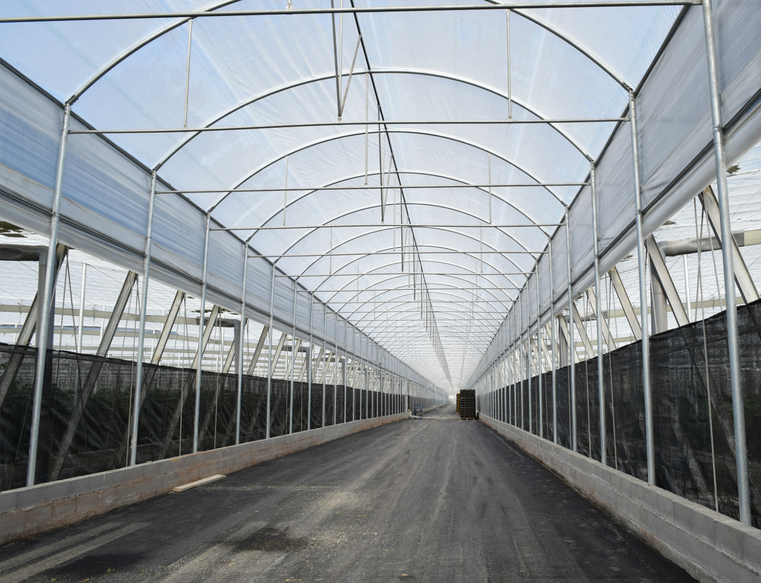 Dise o de invernaderos construccion de invernaderos almeria Diseno de invernaderos pdf