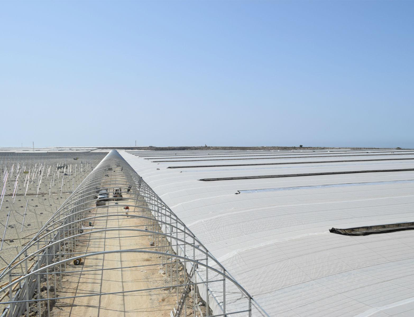 Proyecto-Agroclean-Invernaderos-Otros-Proyectos-Tunel-02