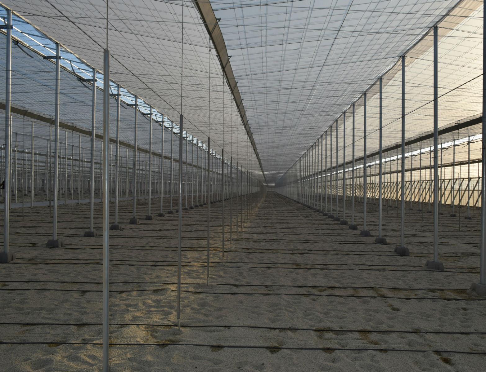 Proyecto-Agroclean-Invernaderos-Tipo-Almeria-01