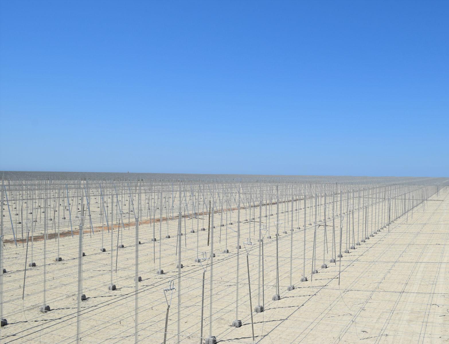 Proyecto-Agroclean-Invernaderos-Tipo-Almeria-02